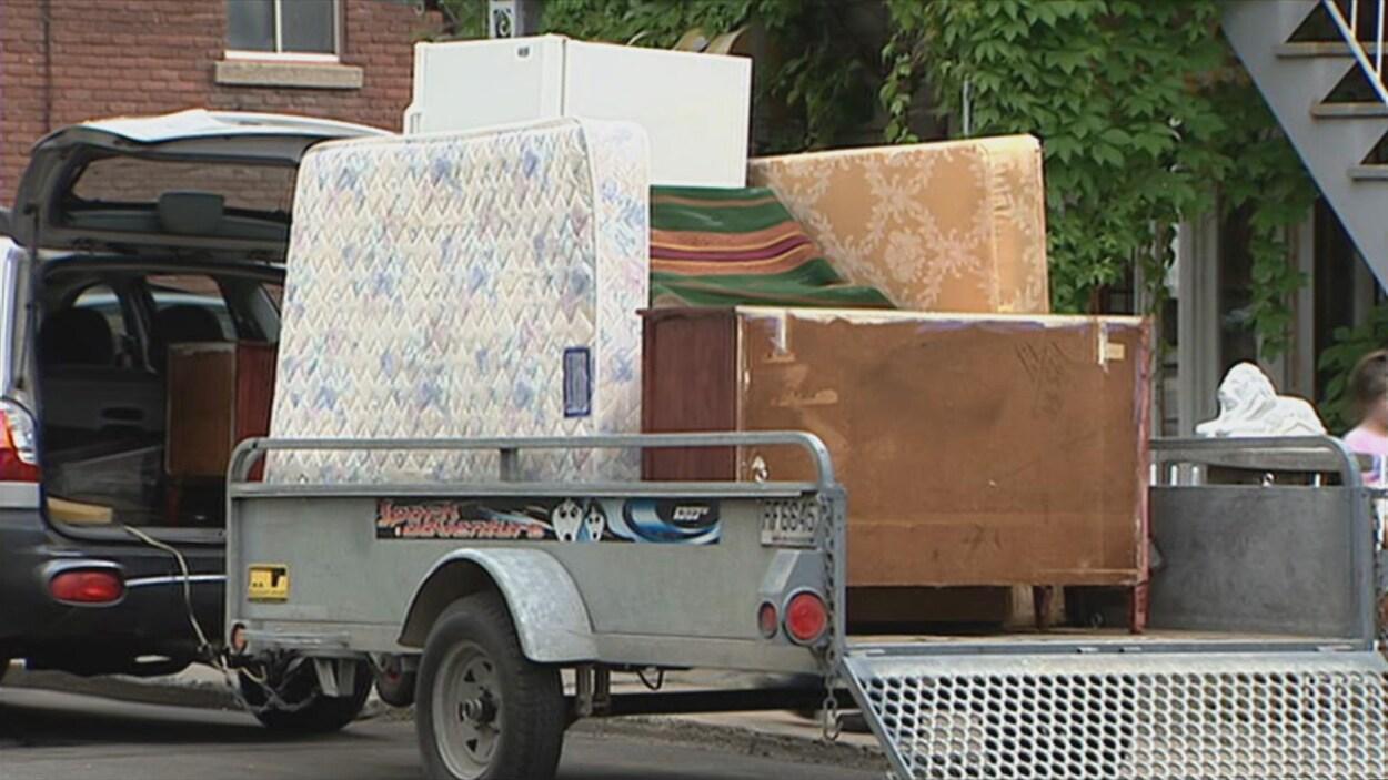 Punaises de lit et déménagement : les professionnels recommandent une extrême prudence.